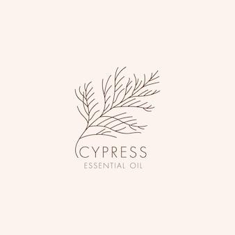 Icône et symbole botaniques linéaires vectoriels - cyprès. logo de conception pour le cyprès d'huile essentielle. produit cosmétique naturel.