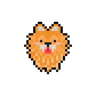 Icône de tête de poméranie dessin animé pixel art.