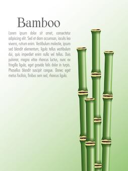 Icône de troncs de bambou. décoration végétale nature et thème asie.