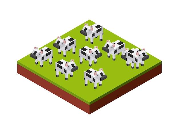 Icône de vaches