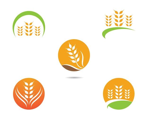 Icône de vecteur de blé