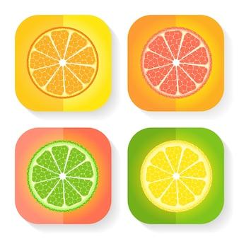 Icônes d'agrumes. illustration vectorielle