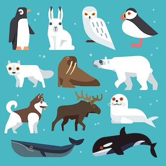 Icônes d'animaux polaires