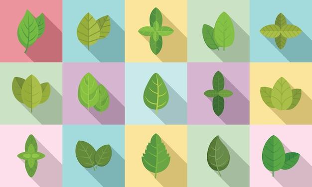 Les icônes de basilic définissent un vecteur plat. feuille d'arôme agricole. basilic soins de santé