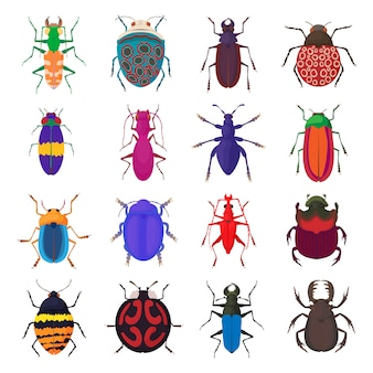 Icônes de bogues insectes définies dans un style bande dessinée