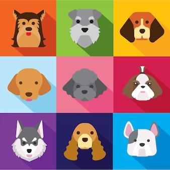 Icônes de chien