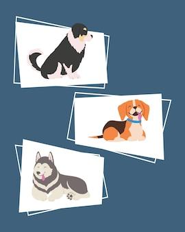 Icônes avec des chiens dans différentes poses