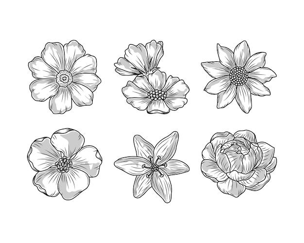Icônes de croquis de fleurs nature florale