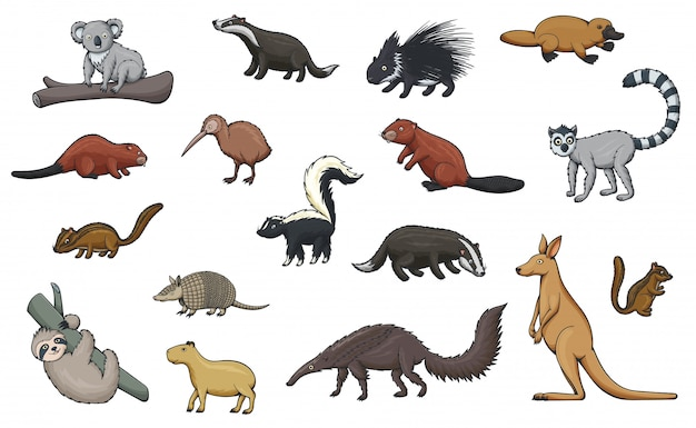 Icônes de dessin animé d'animaux sauvages du zoo et de la faune