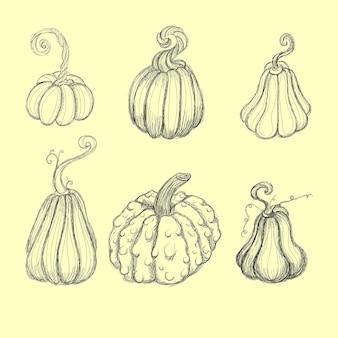 Icônes de dessin animé de légumes citrouille, courge et courge.
