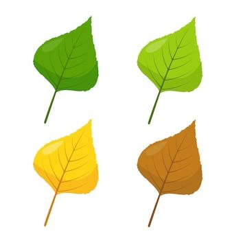 Icônes de feuilles de tremble ou de peuplier multicolores de bouleau