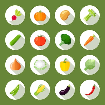 Icônes de légumes plats sertie de radis citrouille pomme de terre céleri isolé illustration vectorielle