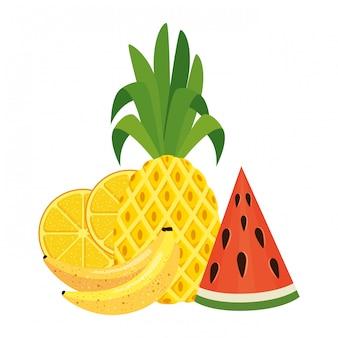 Icônes de nature fruits frais de l'été