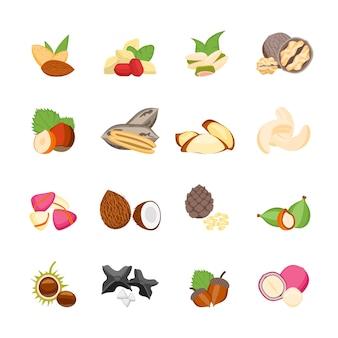 Icônes de noix de couleur de dessin animé définies dans un style design plat