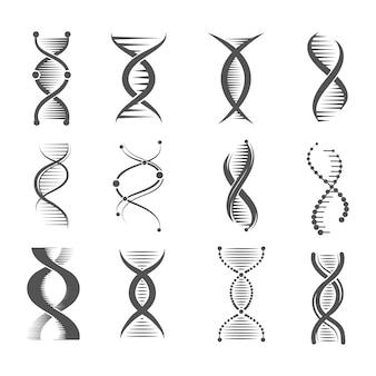 Icônes en spirale adn. helix, molécule de recherche en technologie humaine et symboles médicaux et pharmaceutiques sur les chromosomes