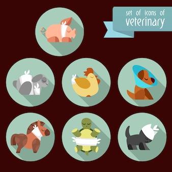 Icônes vétérinaires collectio