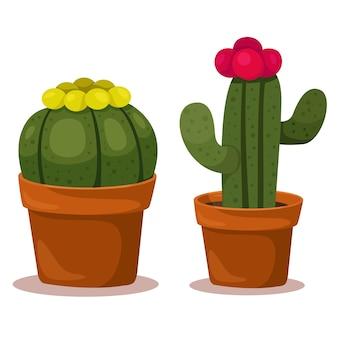 Illustrateur de cactus
