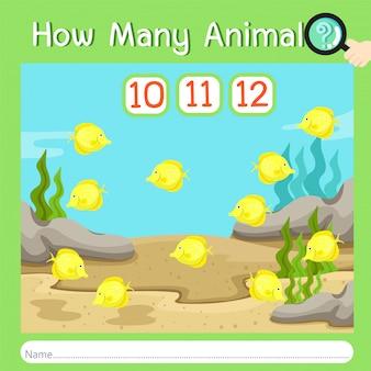 Illustrateur de combien d'animaux huit