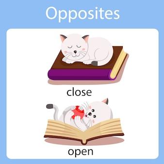 Illustrateur des contraires fermé et ouvert