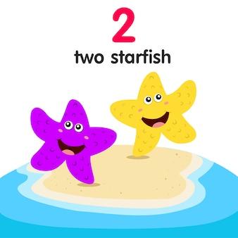 Illustrateur de deux étoiles de mer