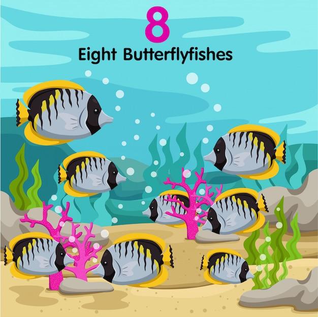 Illustrateur du nombre avec huit poissons papillons