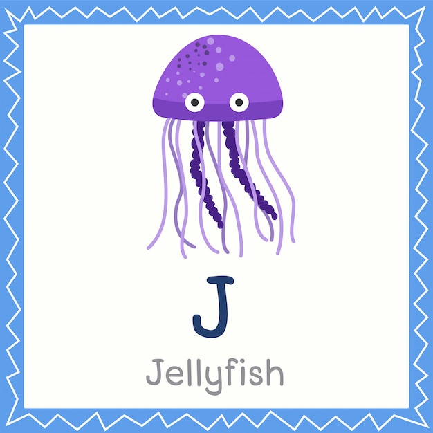 Illustrateur de j for jellyfish animal