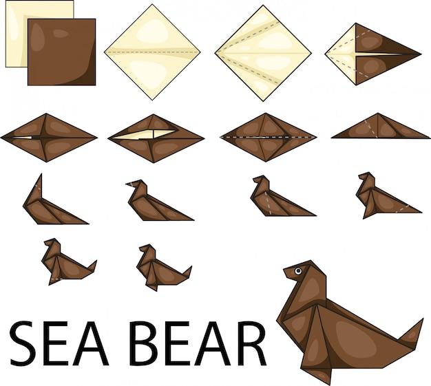 Illustrateur d'ours de mer