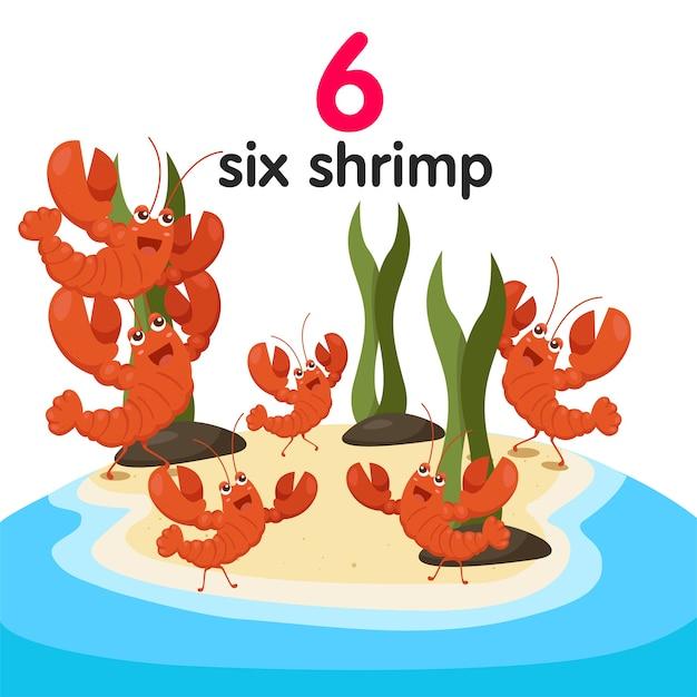 Illustrateur de six crevettes