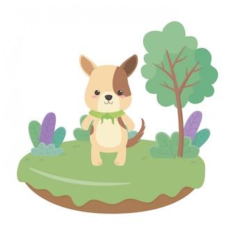 Illustrateur de vecteur de dessin animé chien