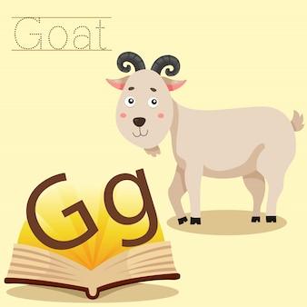 Illustrateur de vocabulaire g pour chèvre