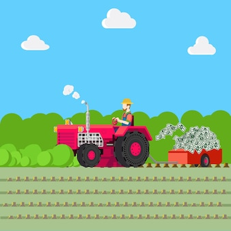 Illustration de l'agriculture de récolte d'argent