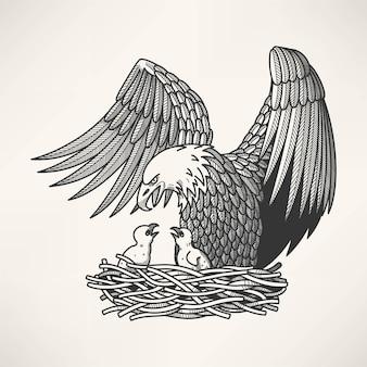 Illustration d'un aigle dans un nid avec des poussins