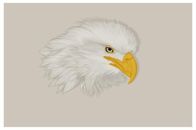 Illustration d'aigle réaliste
