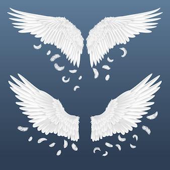 Illustration d'ailes réalistes