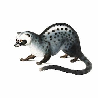 Illustration animal vintage
