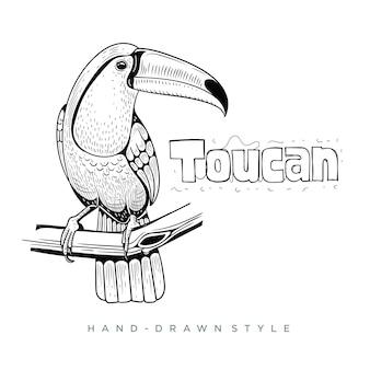 Illustration animale dessinée à la main toucan