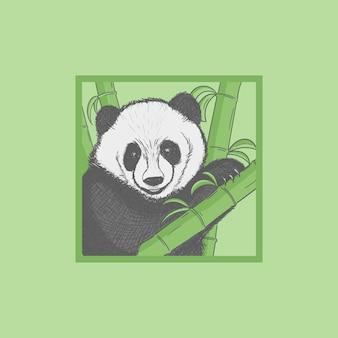 Illustration D'animaux Panda Dessinés à La Main Vecteur Premium