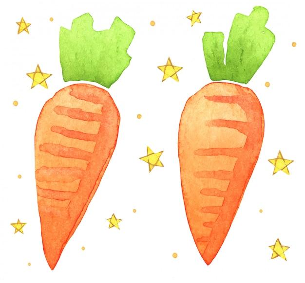 Illustration aquarelle de carotte