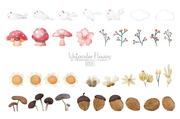 Illustration aquarelle champignon, noyer, feuille et ensemble naturel tiré à la main sauvage