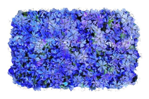 Illustration aquarelle de fleurs violettes