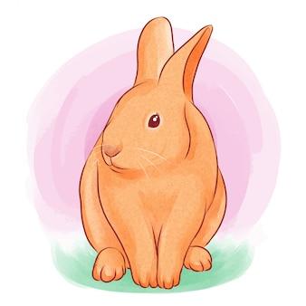Illustration aquarelle de lapin mignon
