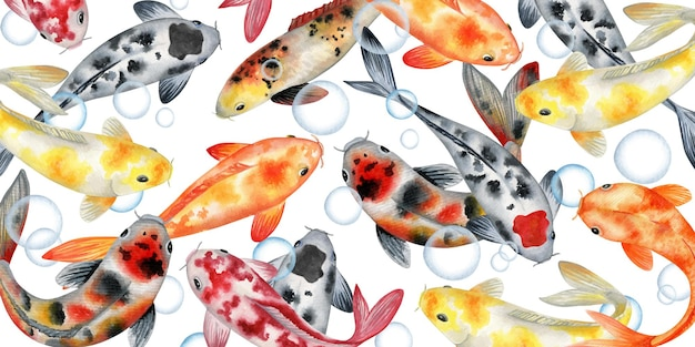 Illustration aquarelle de poissons koi japonais