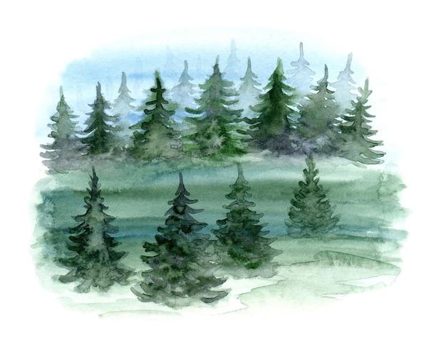 Illustration d'arbres forestiers aquarelle