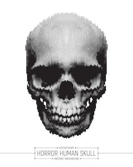 Illustration d'art de crâne d'horreur humaine de vecteur