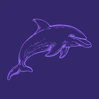 Illustration d'art de dauphin