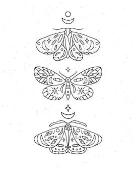 Illustration d'art en ligne papillon céleste