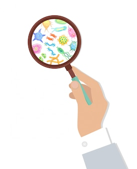 Illustration d'une bactérie à la loupe