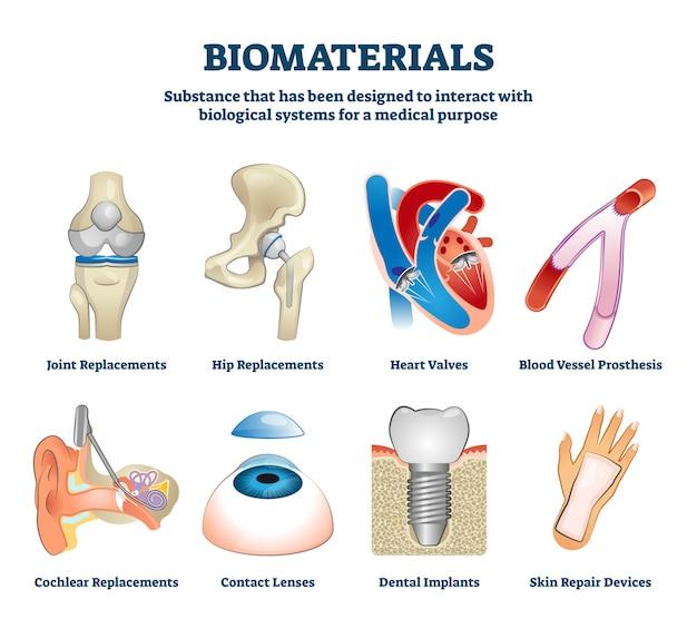 Illustration des biomatériaux. ensemble de collection de remplacement d'organes étiquetés.