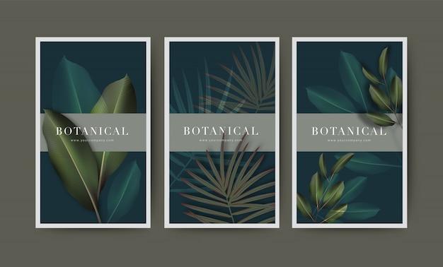 Illustration botanique sertie de vraie feuille