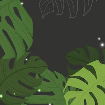 Illustration botanique de vecteur de fond monstera